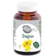 ONAGRAN Aceite de ONAGRA 120-250-450 perlas 700mg, El Granero Integral