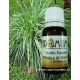Aceite esencial CITRONELA de Ceilán 10ml - Aromaterapia