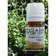 Aceite esencial TOMILLO Timol 10ml - Aromaterapia