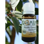 Aceite esencial EUCALIPTO BIO 10ml - Aromaterapia